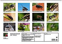 Käferwelt - Kampf der Titanen (Wandkalender 2019 DIN A2 quer) - Produktdetailbild 13