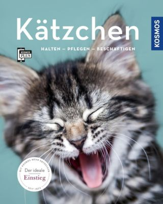 Kätzchen - Hannelore Grimm |