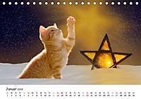 Kätzchen 2019 (Tischkalender 2019 DIN A5 quer) - Produktdetailbild 1