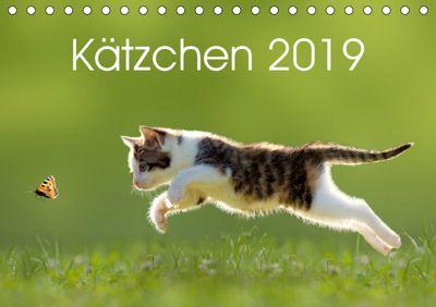 Kätzchen 2019 (Tischkalender 2019 DIN A5 quer), LEOBA