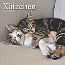 Kätzchen Broschurkal. 2017