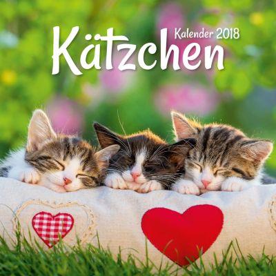 Kätzchen Broschurkal. 2018