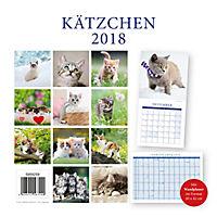 Kätzchen Broschurkal. 2018 - Produktdetailbild 15