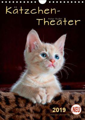 Kätzchen - Theater (Wandkalender 2019 DIN A4 hoch), Peter Roder