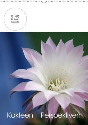 Kakteen Perspektiven (Wandkalender 2019 DIN A3 hoch), Elke Kunkel