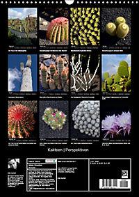 Kakteen Perspektiven (Wandkalender 2019 DIN A3 hoch) - Produktdetailbild 13