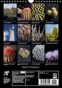 Kakteen Perspektiven (Wandkalender 2019 DIN A4 hoch) - Produktdetailbild 13