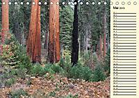 Kalifornien 2019 (Tischkalender 2019 DIN A5 quer) - Produktdetailbild 5