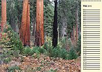 Kalifornien 2019 (Wandkalender 2019 DIN A2 quer) - Produktdetailbild 6