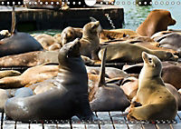 KALIFORNIEN Küstenimpressionen (Wandkalender 2019 DIN A4 quer) - Produktdetailbild 2