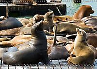 KALIFORNIEN Küstenimpressionen (Wandkalender 2019 DIN A3 quer) - Produktdetailbild 2