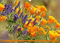Kalifornischer Goldmohn (Wandkalender 2019 DIN A3 quer) - Produktdetailbild 4