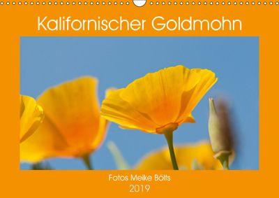 Kalifornischer Goldmohn (Wandkalender 2019 DIN A3 quer), Meike Bölts