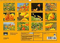 Kalifornischer Goldmohn (Wandkalender 2019 DIN A3 quer) - Produktdetailbild 13