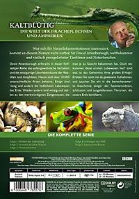 Kaltblütig - Die Welt der Drachen, Echsen und Amphibien - Produktdetailbild 1