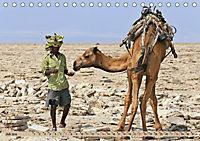 Kamele - Die freundlichen Gepäckträger (Tischkalender 2019 DIN A5 quer) - Produktdetailbild 7