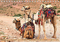 Kamele - Die freundlichen Gepäckträger (Tischkalender 2019 DIN A5 quer) - Produktdetailbild 12
