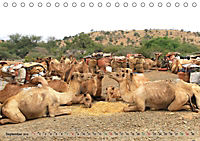 Kamele - Die freundlichen Gepäckträger (Tischkalender 2019 DIN A5 quer) - Produktdetailbild 9