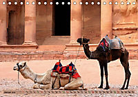 Kamele - Die freundlichen Gepäckträger (Tischkalender 2019 DIN A5 quer) - Produktdetailbild 1