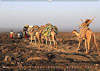 Kamele - Die freundlichen Gepäckträger (Wandkalender 2019 DIN A2 quer) - Produktdetailbild 5