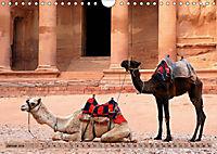 Kamele - Die freundlichen Gepäckträger (Wandkalender 2019 DIN A4 quer) - Produktdetailbild 1