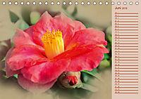 Kamelien Blüten (Tischkalender 2019 DIN A5 quer) - Produktdetailbild 6