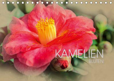 Kamelien Blüten (Tischkalender 2019 DIN A5 quer), Dirk Meutzner