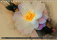 Kamelien Blüten (Tischkalender 2019 DIN A5 quer) - Produktdetailbild 4