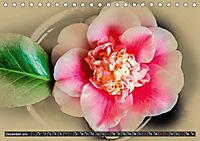 Kamelien Blüten (Tischkalender 2019 DIN A5 quer) - Produktdetailbild 12
