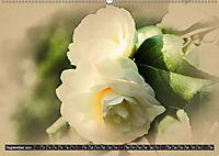 Kamelien Blüten (Wandkalender 2019 DIN A2 quer) - Produktdetailbild 9