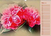 Kamelien Blüten (Wandkalender 2019 DIN A3 quer) - Produktdetailbild 4