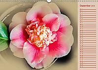 Kamelien Blüten (Wandkalender 2019 DIN A3 quer) - Produktdetailbild 12