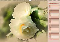 Kamelien Blüten (Wandkalender 2019 DIN A3 quer) - Produktdetailbild 9
