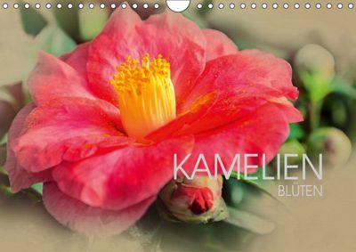 Kamelien Blüten (Wandkalender 2019 DIN A4 quer), Dirk Meutzner