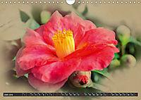 Kamelien Blüten (Wandkalender 2019 DIN A4 quer) - Produktdetailbild 6