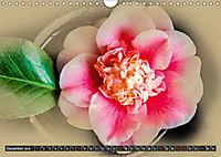 Kamelien Blüten (Wandkalender 2019 DIN A4 quer) - Produktdetailbild 12
