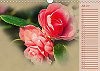 Kamelien Blüten (Wandkalender 2019 DIN A4 quer) - Produktdetailbild 7