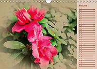 Kamelien Blüten (Wandkalender 2019 DIN A4 quer) - Produktdetailbild 5