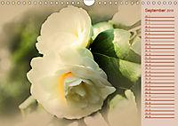 Kamelien Blüten (Wandkalender 2019 DIN A4 quer) - Produktdetailbild 9