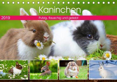 Kaninchen. Putzig, flauschig und geliebt (Tischkalender 2019 DIN A5 quer), Rose Hurley