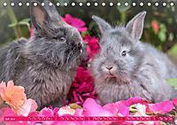 Kaninchen. Putzig, flauschig und geliebt (Tischkalender 2019 DIN A5 quer) - Produktdetailbild 7