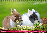 Kaninchen. Putzig, flauschig und geliebt (Tischkalender 2019 DIN A5 quer) - Produktdetailbild 10
