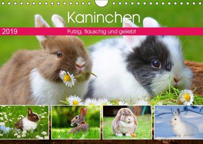 Kaninchen. Putzig, flauschig und geliebt (Wandkalender 2019 DIN A4 quer), Rose Hurley