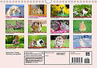 Kaninchen. Putzig, flauschig und geliebt (Wandkalender 2019 DIN A4 quer) - Produktdetailbild 13