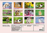 Kaninchen. Putzig, flauschig und geliebt (Wandkalender 2019 DIN A2 quer) - Produktdetailbild 13