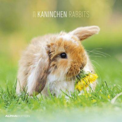 Kaninchen / Rabbits 2019, ALPHA EDITION