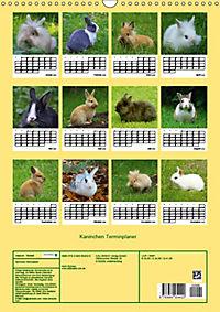 Kaninchen Terminplaner (Wandkalender 2019 DIN A3 hoch) - Produktdetailbild 13