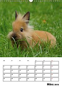 Kaninchen Terminplaner (Wandkalender 2019 DIN A3 hoch) - Produktdetailbild 3