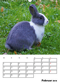 Kaninchen Terminplaner (Wandkalender 2019 DIN A3 hoch) - Produktdetailbild 2