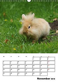 Kaninchen Terminplaner (Wandkalender 2019 DIN A3 hoch) - Produktdetailbild 11